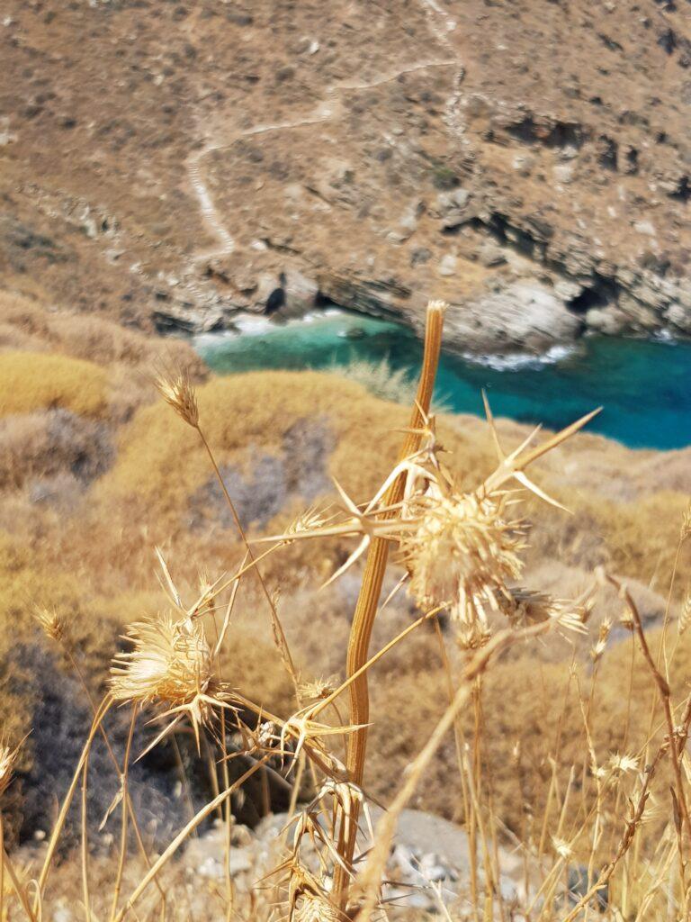 Παραλίες Τζια