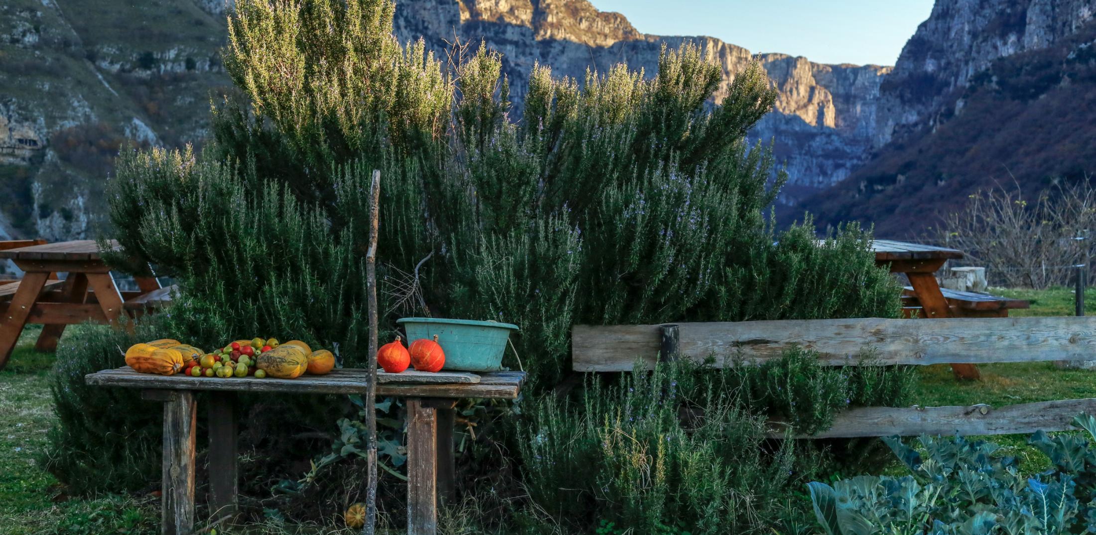 21 φωτογραφικά κάδρα από το Ζαγόρι_zvoura.gr