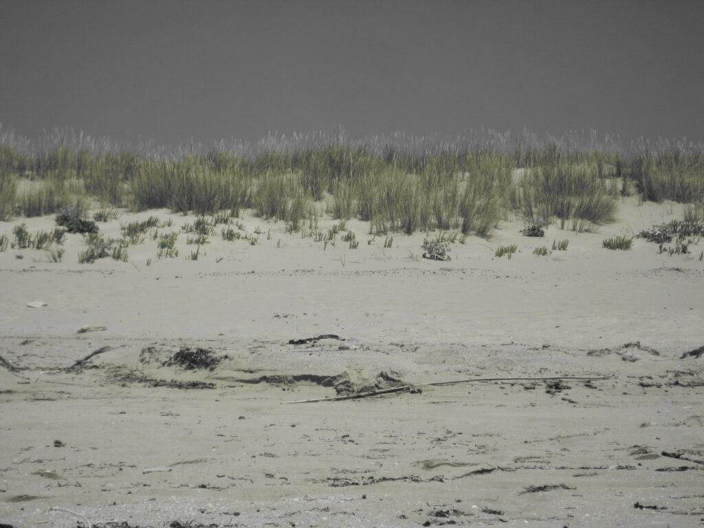 Αμμοθίνες Παραλία του Σίμου